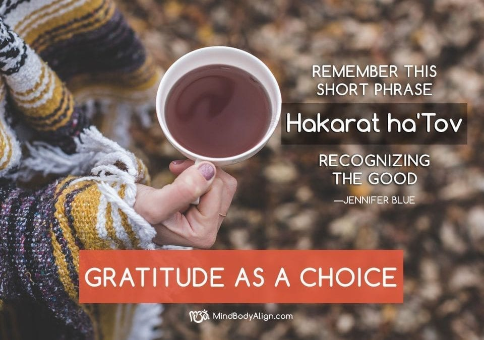 Recognize the good – Hakarat ha'Tov